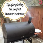 Tips for Picking the Best Barbecue