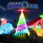 New Dana Point IlluminOcean Holiday Lighting Attraction