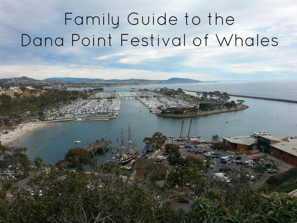 Dana Point Festival of Whales