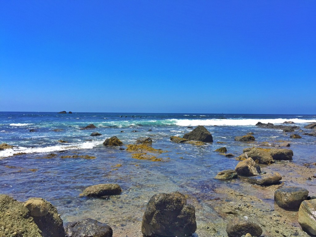 Dana Point Tide Pools