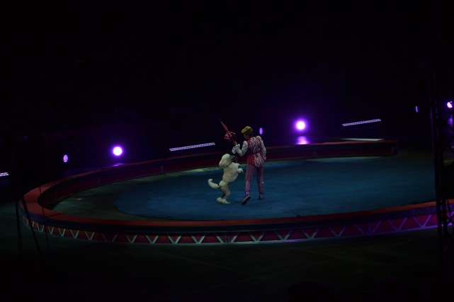 Ringling-Brothers-Circus-6