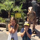 Raptor Encounter at Universal Studios Hollywood