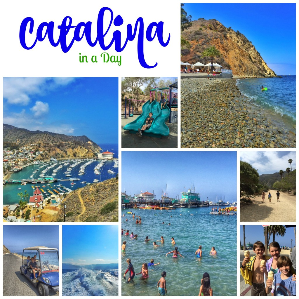 Catalina Island Beach: Guide To Seeing Catalina Island In A Day
