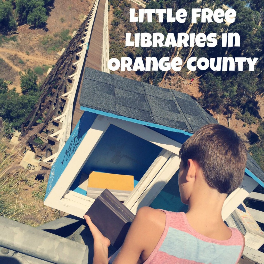 FreeLittleLibraryOC.