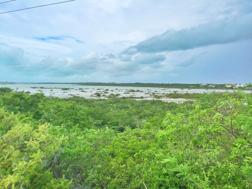 View of Providenciales in the Turks and Caicos from The Hole