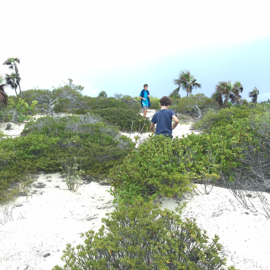 Exploring the sand dunes at Long Bay Beach in the Turks and Caicos