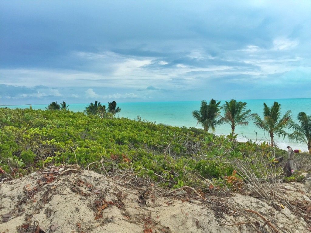 Beautiful view of Long Bay Beach in the Turks and Caicos