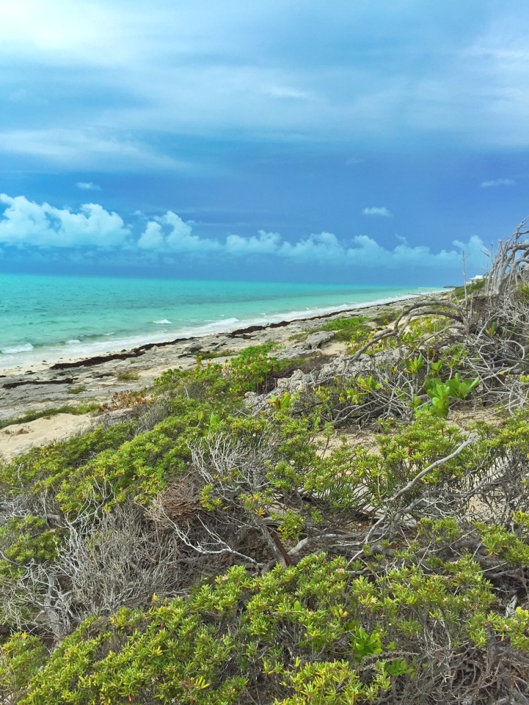 Walking along Long Bay Beach in the Turks and Caicos