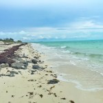 Long Bay Beach in the Turks and Caicos
