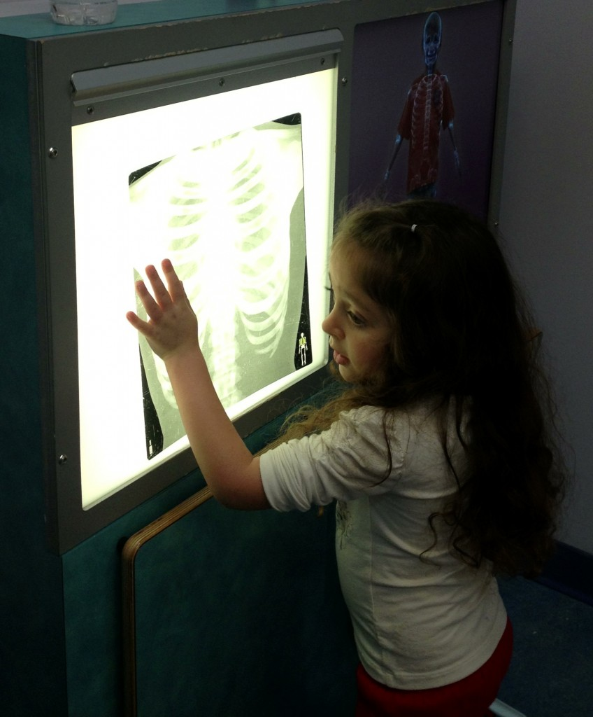Child looking at an x-ray at Pretend City