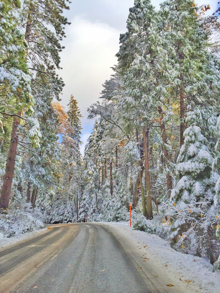 Snow covered Yosemite Roads