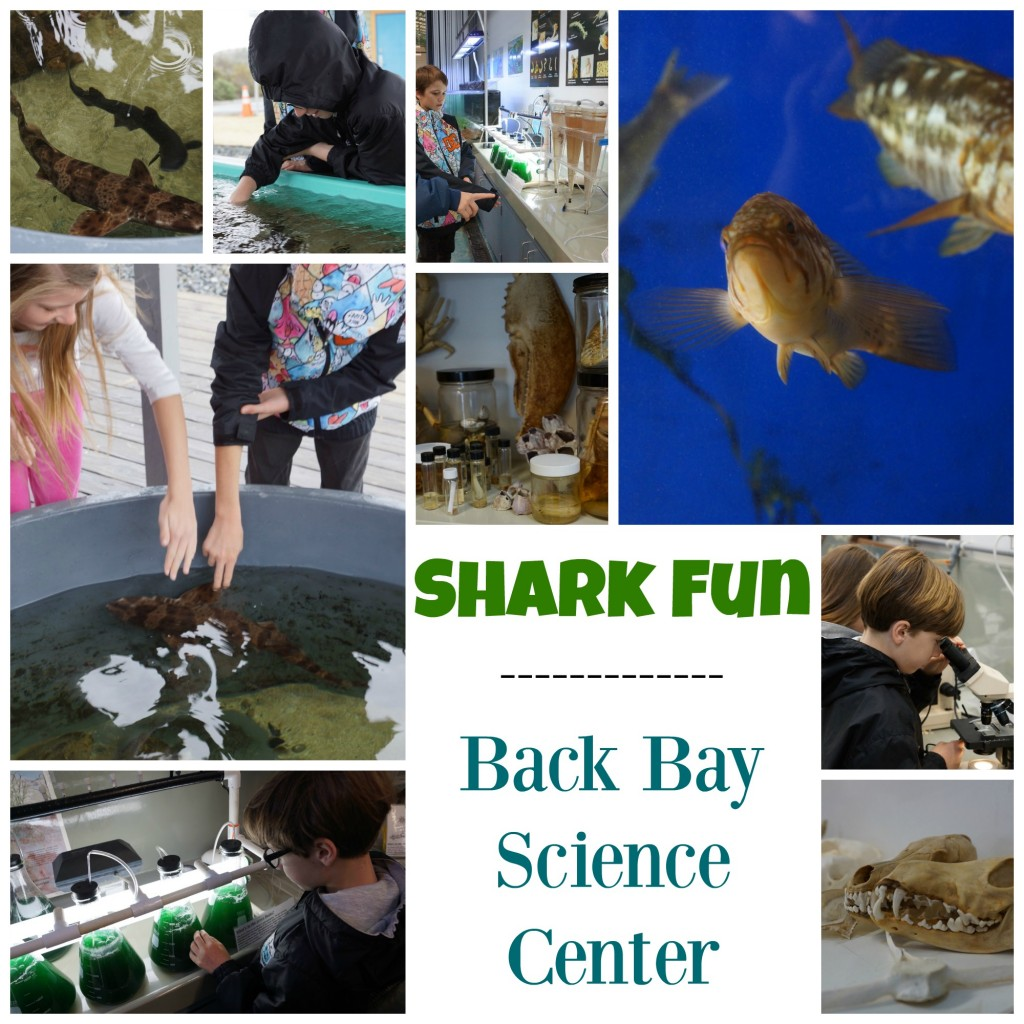 Back Bay Science Center in Newport Beach