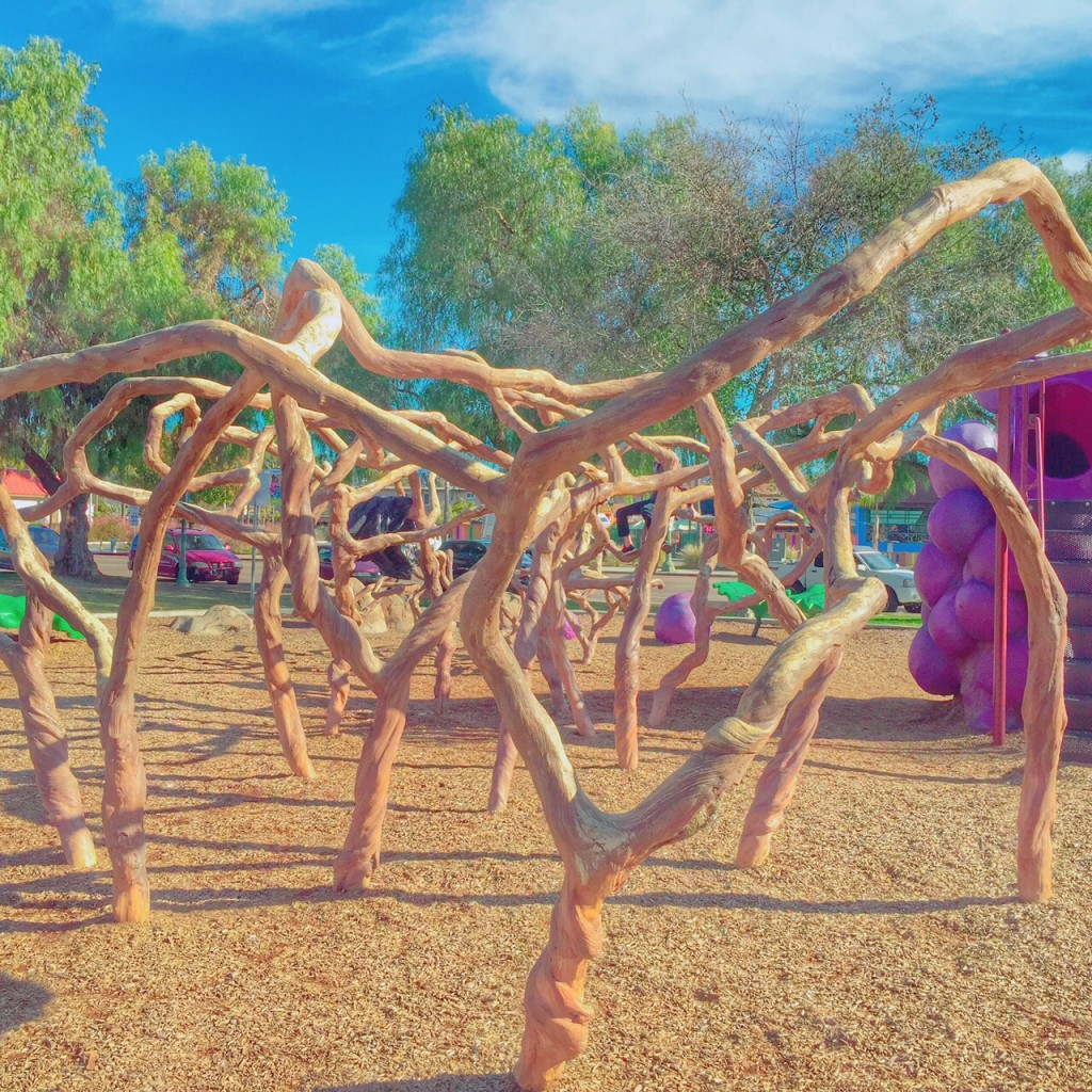 Grape Vine Play Structure