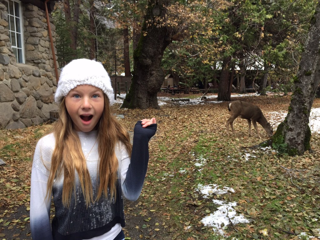 Kid and Deer in Yosemite