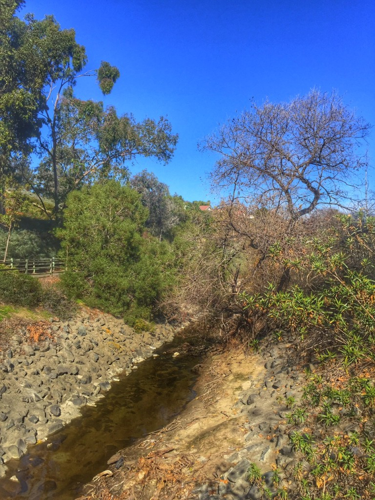Nature Walk in Mission Viejo