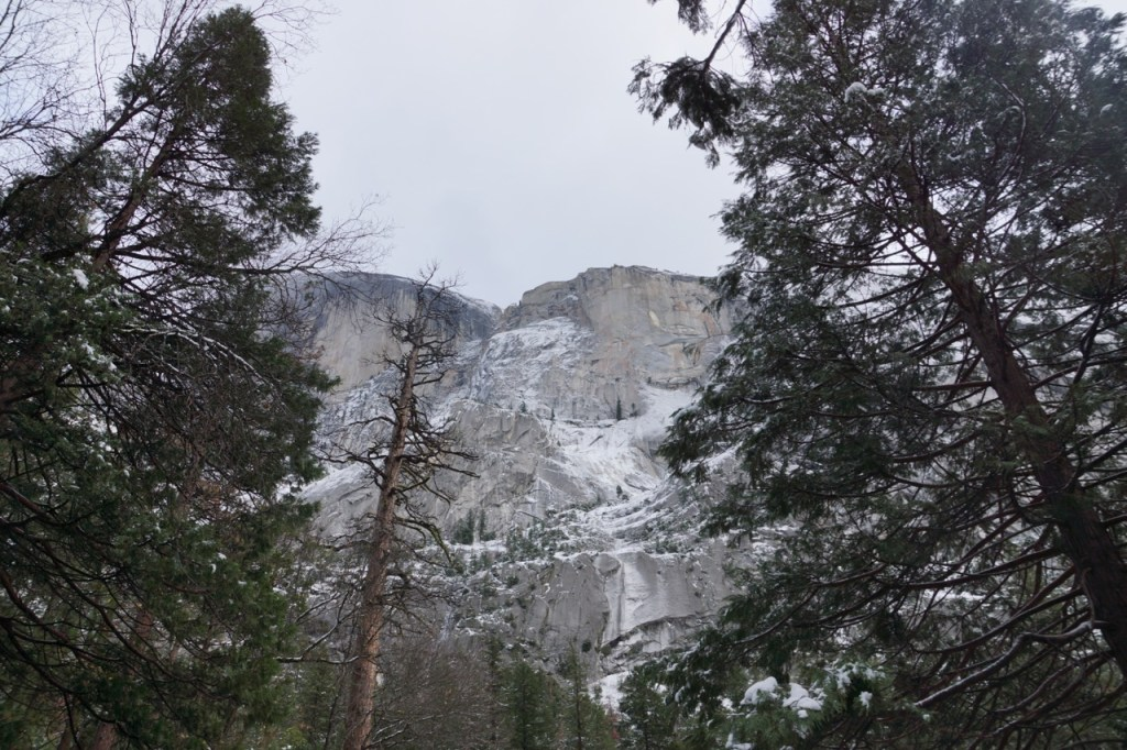 best view of half dome