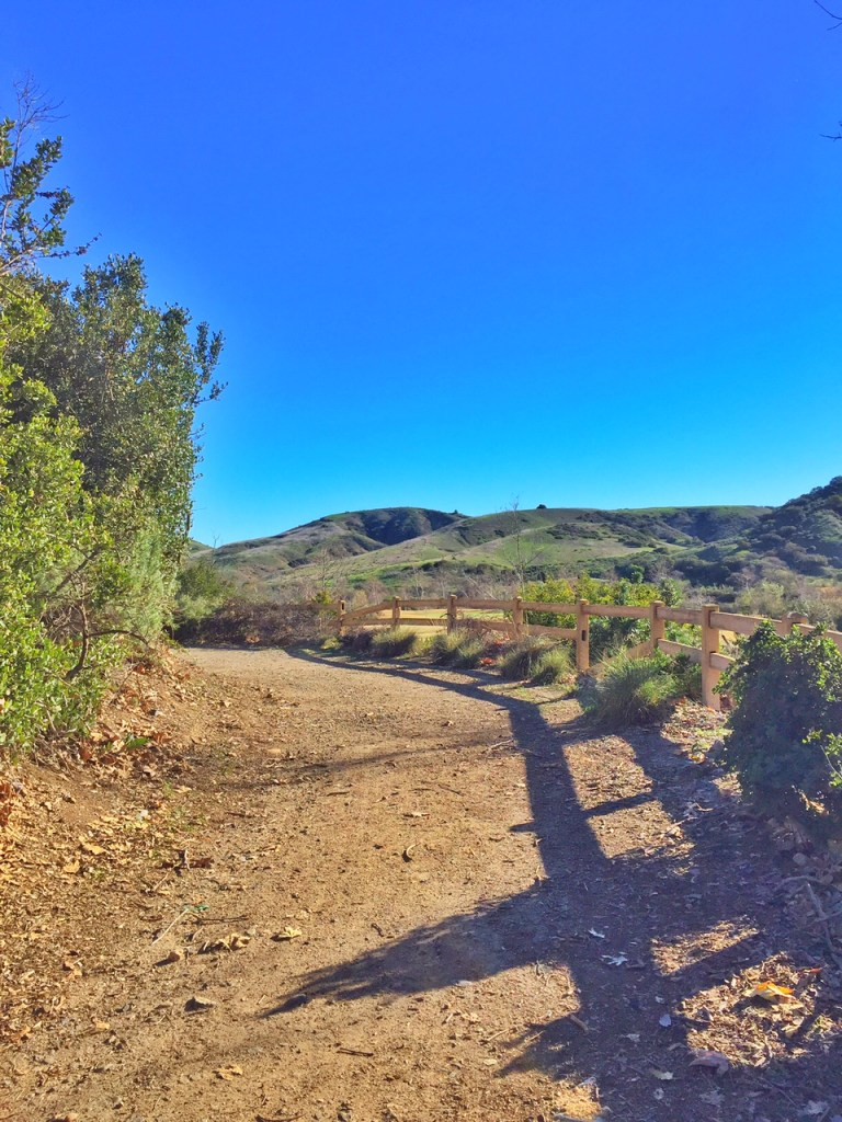 Best Hike in Mission Viejo