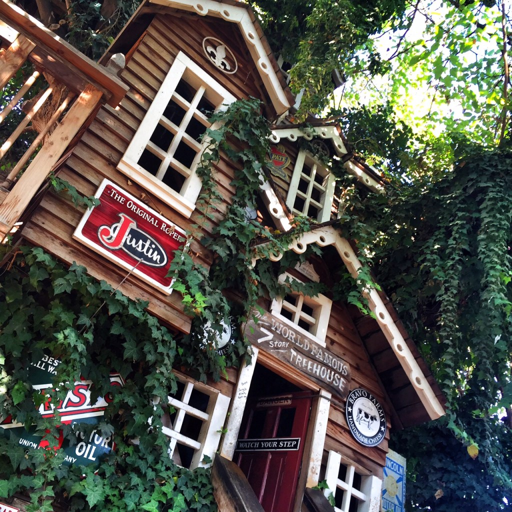 Worlds famous treehouse