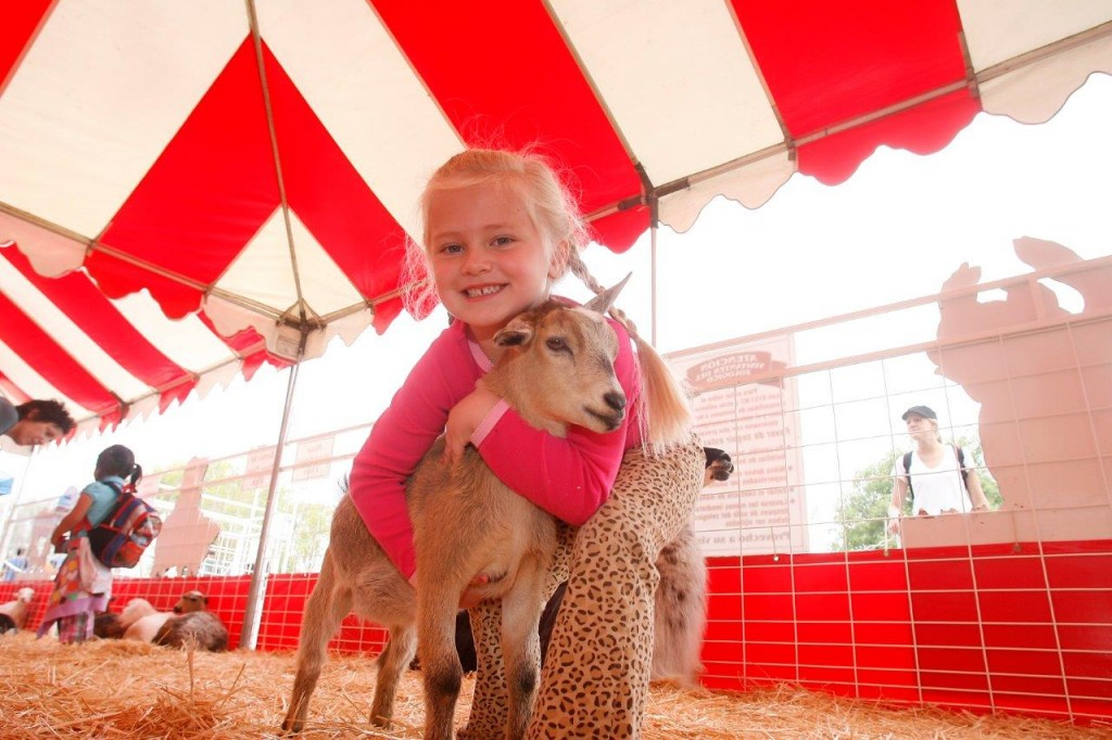 Animal love at the pet expo