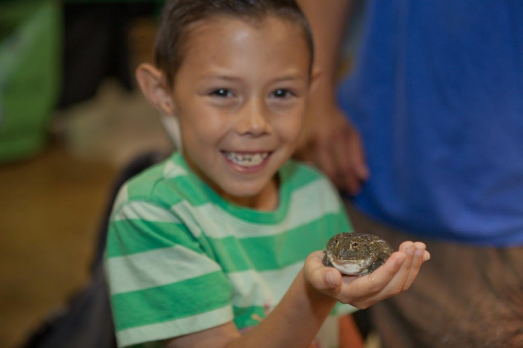 Kid holding a frog at the pet expo