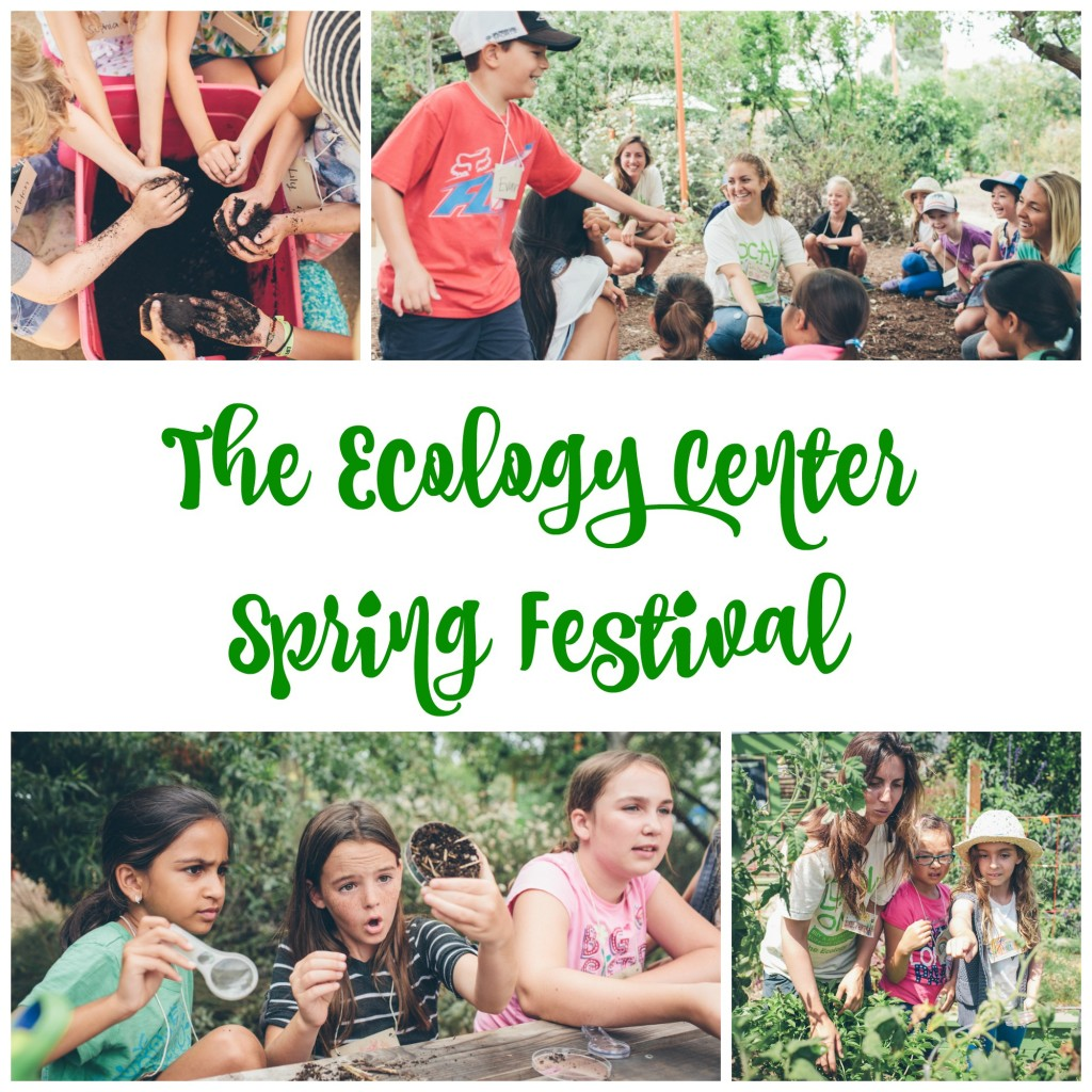 The Ecology Center Spring Festival