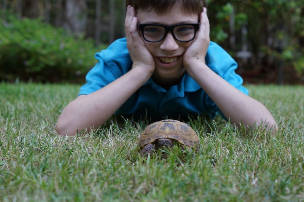 A boy and his turtle