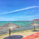 Seafood and Ocean Breezes at Bismarkcito in La Paz