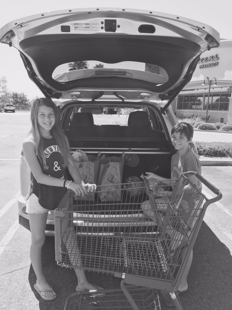 Grocery Shopping with the Rav4