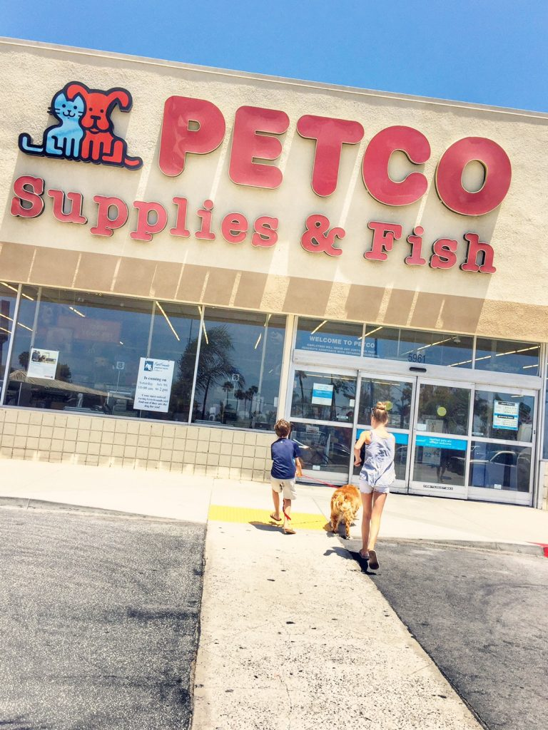 Kids walking into Petco with Daisy