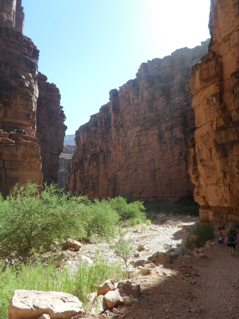Trail through Havasupai Canyon