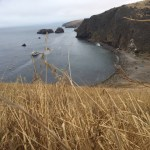 Unforgettable Santa Cruz Island Adventure