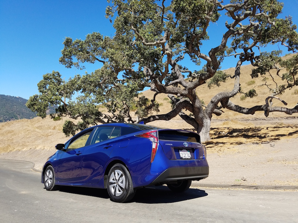Prius meets nature