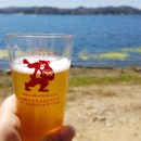 Refreshing Brews and Scenic Views at the California Beer Festival