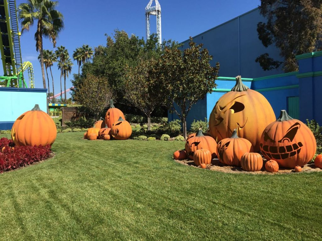 pumpkin-decorations-at-knotts-spooky-farm