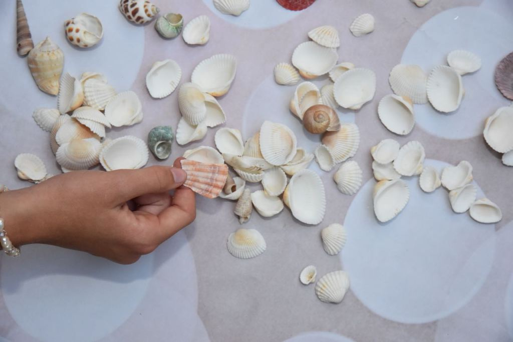 shells-for-mermaid-costume