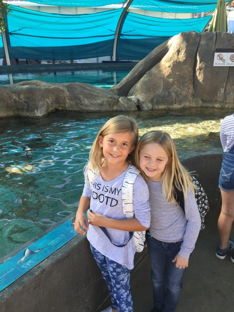 Animal Love at The Aquarium of the Pacific