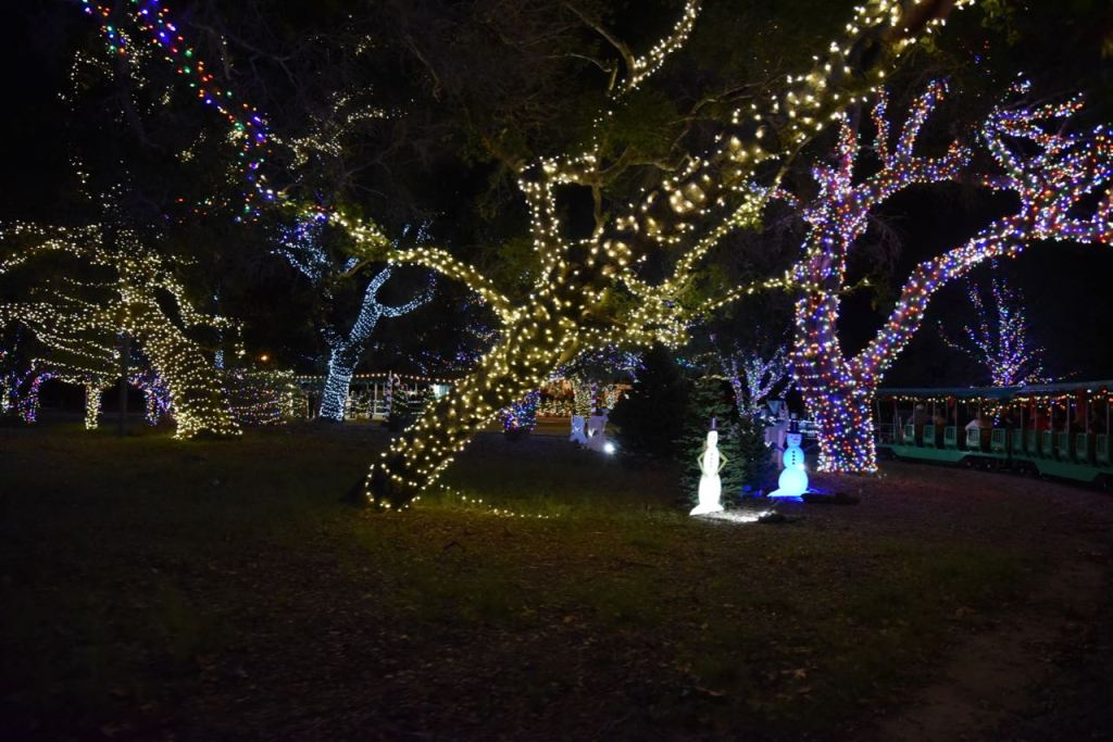 Looking at Christmas lights at Irvine Park Railroad