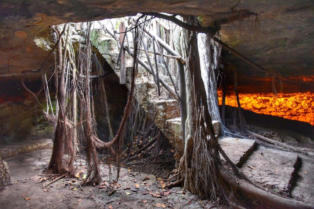 Banyan Tree Roots at Cenote Burrodromo in Mayakoba