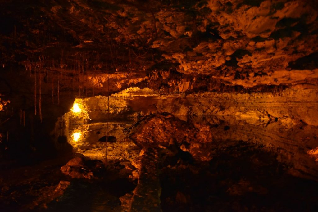 Inside look into the cenote in Mayakoba