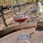 Lorimar Vineyards & Winery in Temecula