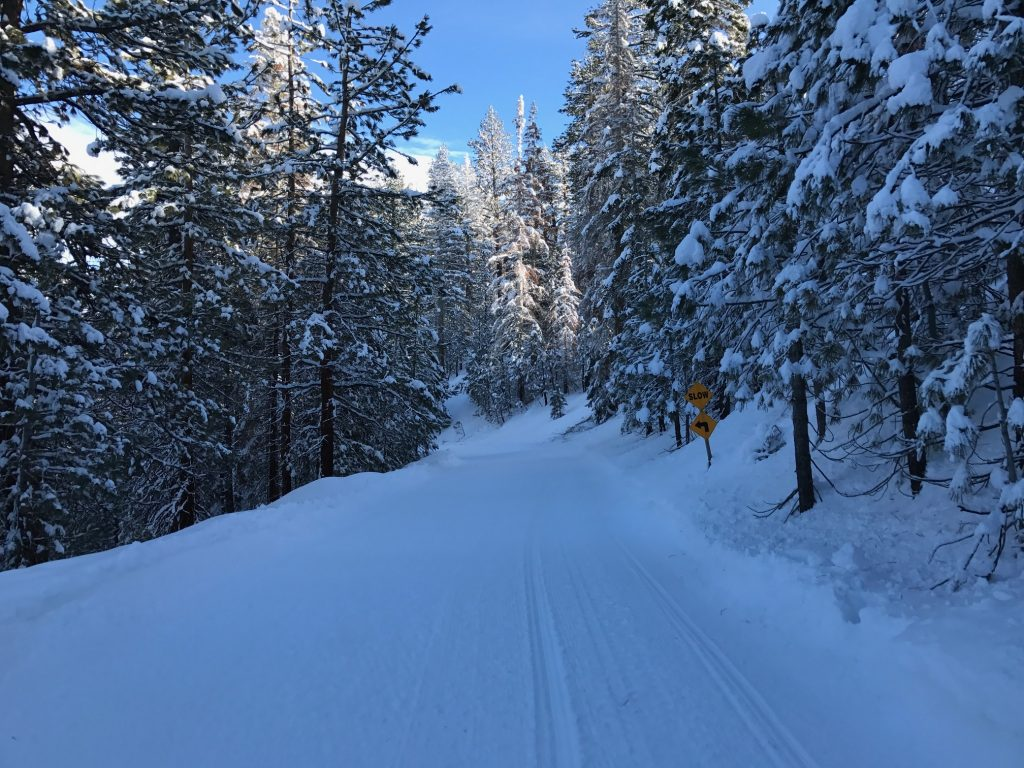 Exploring Mammoth on a snowmobile