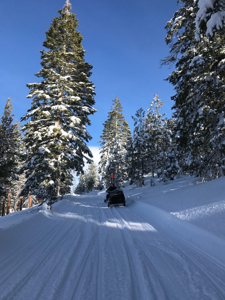 Family Snowmobile Riding in Mammoth Lakes