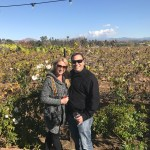 Grapeline Wine Tours in Temecula Valley