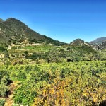 Family-friendly Adventures in Ojai