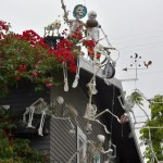San Diego Skeleton House