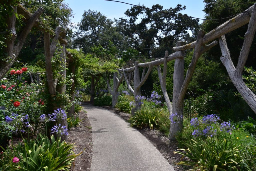 The Huntington Library And Botanical Gardens Is Located At 1151 Oxford  Road, San Marino, CA 91108. They Are Open From 10 Am To 5 Pm (closed On  Tuesday).