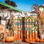 You're Invited: Authentic Family Harvest Faire