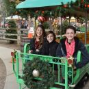 Holiday Traditions at the Irvine Park Railroad Christmas Train