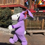 All Things Boysenberry at the Knott's Boysenberry Festival