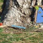The Fairy Trail Returns to Oso Creek Trail